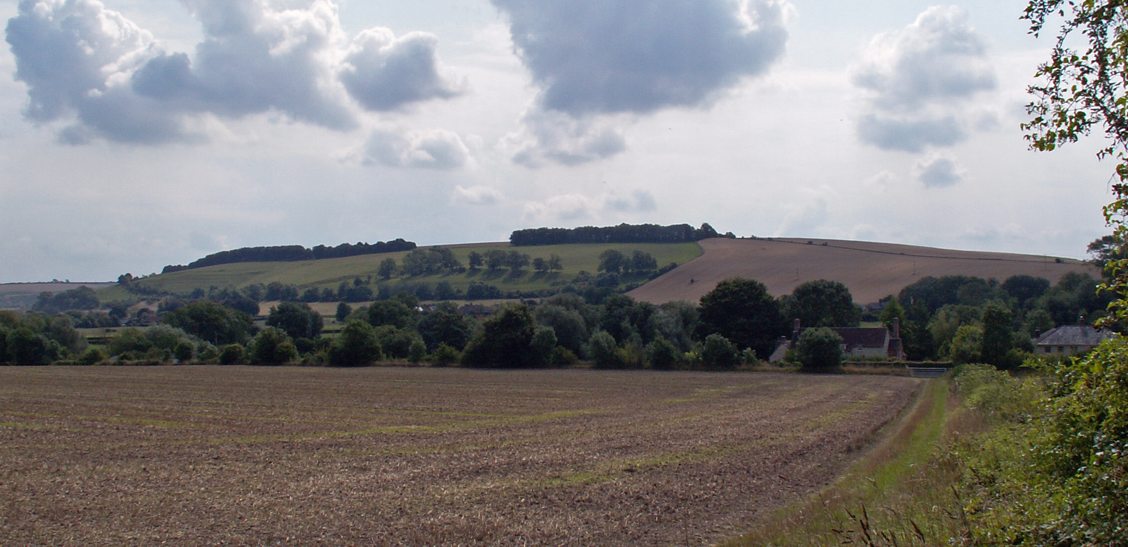 04 Chalke Valley.jpg - KONICA MINOLTA DIGITAL CAMERA